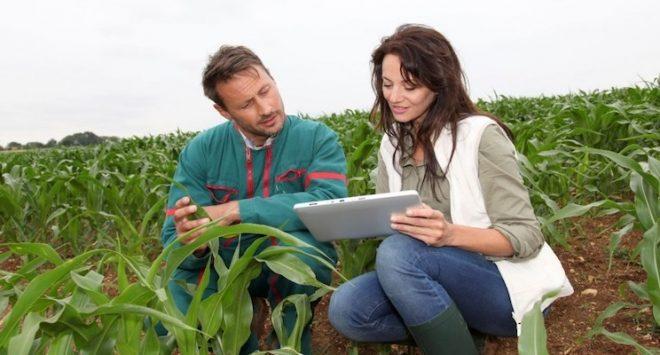 Italia prima potenza per valore aggiunto in agricoltura: il merito è anche delle imprese femminili