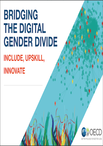 Bridging the Digital Gender Divide
